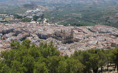 Guía interactiva de licencia de actividad y apertura en Jaén